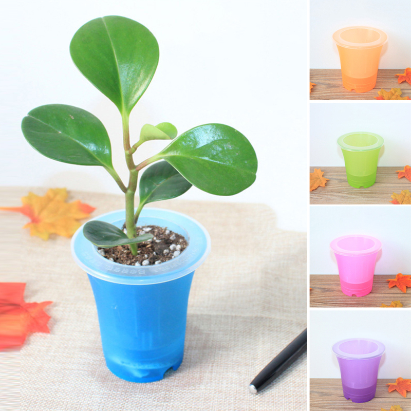 Automatic watering Home Office Garden Flower Pot home Decor Plastic Matte Surface Colorful Succulent Planter Jardin Bonsai H2