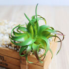 Artificial Succulents Plant Garden Miniature Fake Cactus DIY Home Floral Decor