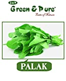 Green & Pure - High Yield Organic Vegetable Seeds - Palak - Pack of 5 for Kitchen / Terrace / Home Garden