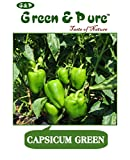 Green & Pure - High Yield Organic Vegetable Seeds - Capsicum Green (Pack of 1) for Kitchen / Terrace / Home Garden