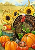 Toland Home Garden 112506 Toland-Hello Turkey-Decorative Thanksgiving Harvest Fall Autumn Pumpkin USA-Produced Garden Flag
